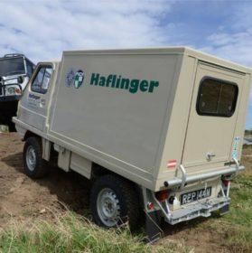 Haflinger Poly Cab back